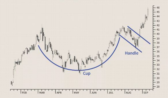 cup and handle 2